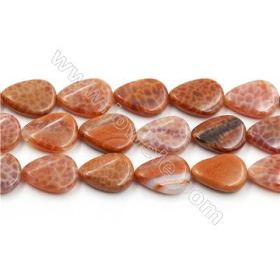 "Natural Fire Agate Beads Strands, Twisted Teardrop, Size 13x18mm, Hole 0.8mm, 15~16""/strand"