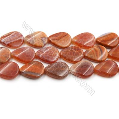 "Natural Fire Agate Beads Strands, Twisted Teardrop, Size 18x25mm, Hole 1mm, 15~16""/strand"