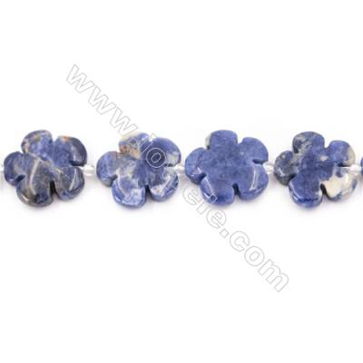 Natural Sodalite Beads Strand  Flower  Size 20x20mm   hole 1mm   about 20 beads/strand 15~16''