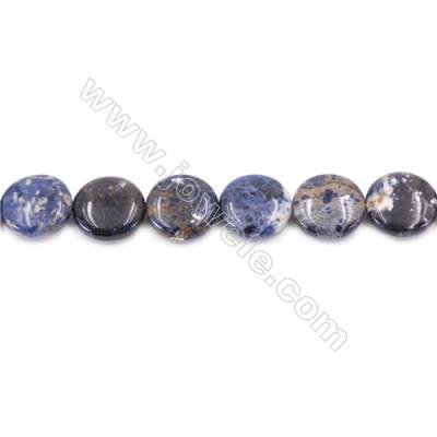 Natural Sodalite Beads Strand  Flat Round  Diameter 20mm  Hole 1mm  about 20 beads/strand  15~16""