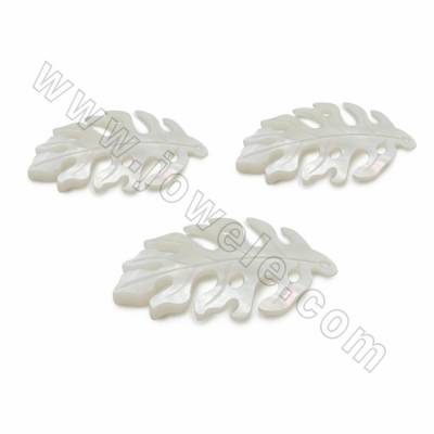 Natural White Shell Pendants, Leaf, Size 20x34x1.8mm, Hole 0.6mm, 10pcs/pack
