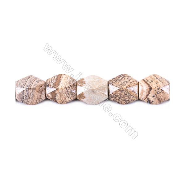 """Natural Picture Jasper Beads Strand  Faceted Cuboid  Size 20x18x13mm  hole 1.5mm  22 beads/strand 15~16"""""""