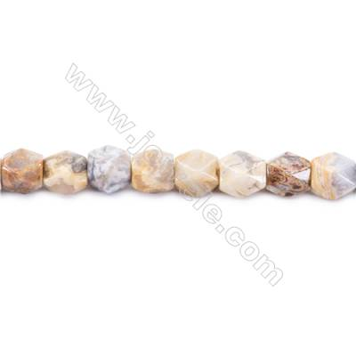 Crazy Lace Agate Beads Strand  Faceted Cuboid  Size 11x9x9mm   hole 1.5mm   about 35 beads/strand 15~16''