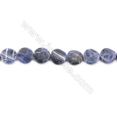 Natural Sodalite Beads Strand  Twisted Flat Round  Diameter 16mm  Hole 1mm  about 24 beads/strand  15~16""
