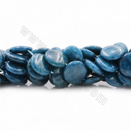 "Natural Apatite Beads Strands, Coin, Diameter 20mm, Thick 6mm, Hole 1mm, 15~16""/strand"