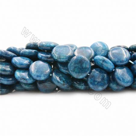 "Natural Apatite Beads Strands, Coin, Diameter 15mm, Thick 6mm, Hole 1mm, 15~16""/strand"