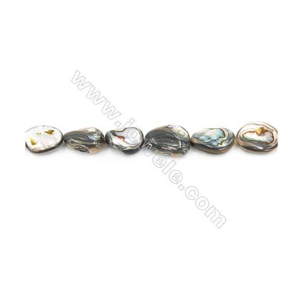 Abalone Shell Beads Strand, Irregular Oval, Size 14x20mm, Hole 1mm, about 19 beads/strand, 15~16""