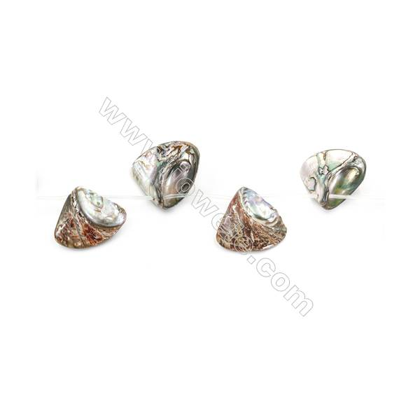 """Abalone Shell Beads Strand, Cone, Size 34x36mm, Hole 1.5mm, about 9 beads/strand, 15~16"""""""