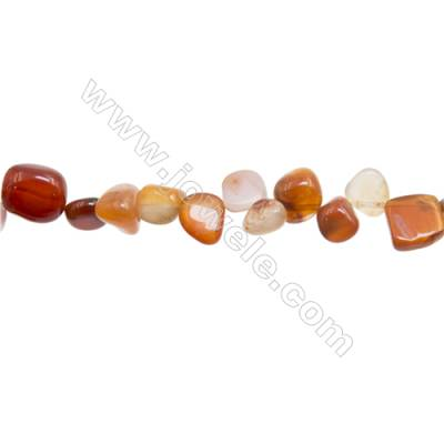 "Natural Carnelian Agate Beads Strand  Irregular  Size7~12x8~16mm  Hole: 1mm  15~16"" x 1strand"
