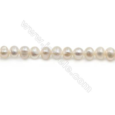 "Natural Fresh Water Pearl Beads Strand  Oval  Size 5~6mm  Hole 0.5mm  15~16"" x 1strand"