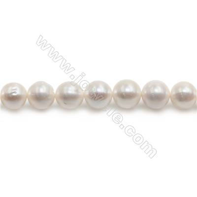 "Natural Fresh Water Pearl Beads Strand  Oval  Size 10~11mm  Hole 0.8mm  15~16"" x 1strand"