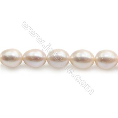 "Natural Fresh Water Pearl Beads Strand  Oval  Size 9~10mm  Hole 0.8mm  15~16"" x 1strand"