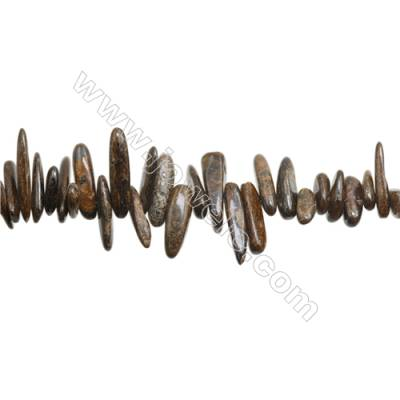 "Natural Bronzite Beads Strand, Size 3~6mm x9~20mm, Hole 1mm, 15~16""/strand"