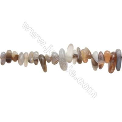 "Natural Botswana Agate Beads Strand  Chips  Size 4~6x9~19mm  hole 1mm  15~16"" x 1strand"