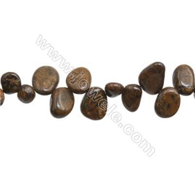 "Natural Bronzite Beads Strand, Irregular Oval, Size 8~12mm x9~16mm, Hole 1mm, 15~16""/strand"