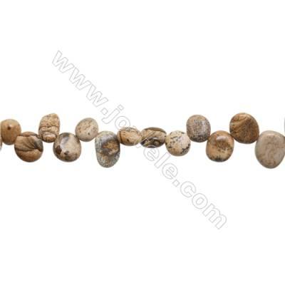 "Natural Picture Jasper Beads Strand  Irregular  Size 8~11x9~13mm  hole 1mm  15~16"" x 1strand"