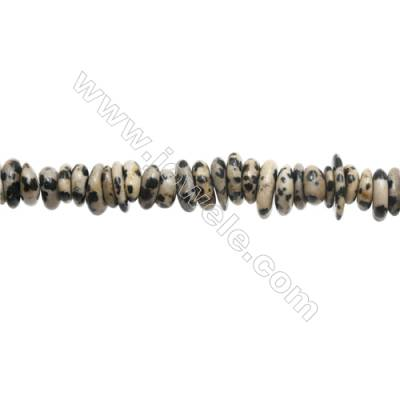 "Natural Dalmatian Jasper Chips  Size 2~4x9~14mm   hole 1mm  15~16"" x 1strand"