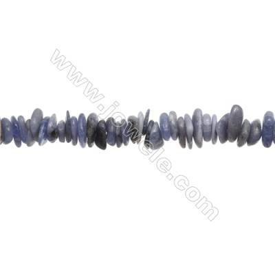 "Natural Tanzanite Chips Strand  Size 1~4x9~16mm  hole 1mm  15~16"" x 1 Strand"