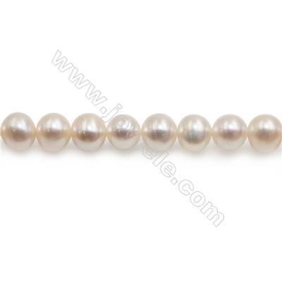 "Fresh Water White Pearl Beads Strand  Round  Size 7~8mm  Hole 1mm  15~16"" x 1strand"