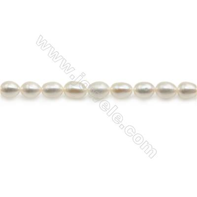 "Fresh Water White Pearl Beads Strand  Oval  Size 4.5~5x5.5~6mm  Hole 0.6mm  15~16"" x 1strand"