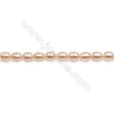 "Fresh Water Pink Pearl Beads Strand  Oval  Size 5~5.5x6~7mm  Hole 0.6mm  15~16"" x 1strand"