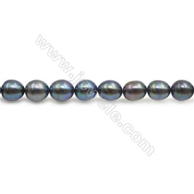 "Fresh Water Pearl Beads Strand  Oval  Size 6.5~7x7.5~8mm  Hole 0.8mm  15~16"" x 1strand"
