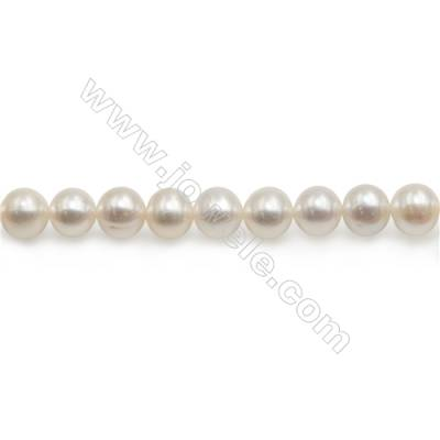 "Fresh Water Pearl Beads Strand  Round  Size 7~8mm  Hole 1mm  15~16"" x 1strand"