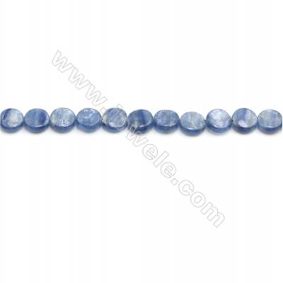 Natural Kyanite Beads Strand  Flat Round  Diameter 10mm  hole 0.8mm  about 42 beads/strand 15~16""