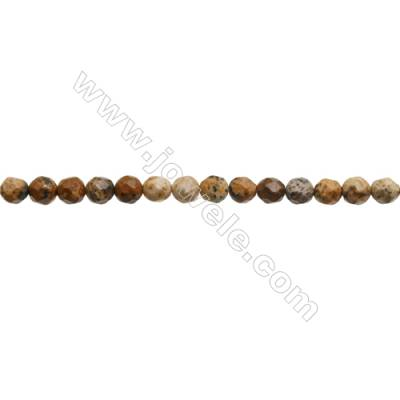 Natural Picture Jasper Beads Strand  Faceted Round  Diameter 3mm  hole 0.6mm  about 124 beads/strand 15~16""