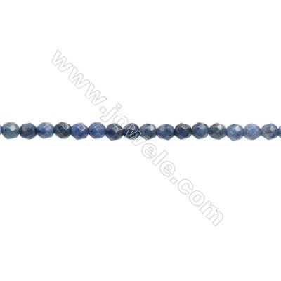 Natural Sodalite Beads Strand  Faceted Round  Diameter 3mm  hole 0.6mm  134 beads /strand 15 ~ 16""