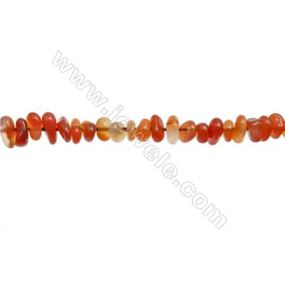 """Natural Carnelian Beads Strands   Size 5~8x6~12mm  Hole: 0.8mm  15~16"""" x 1strand"""