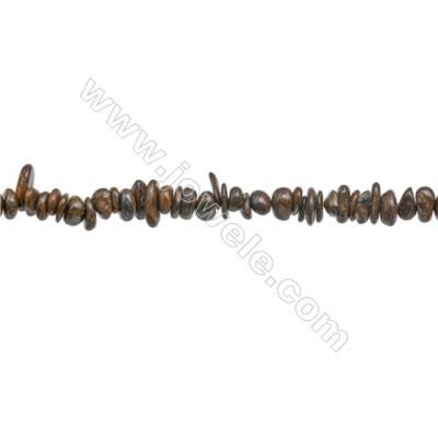 "Natural Bronzite Chips Strand  Size 4~8x5~12mm  hole 0.8mm  15~16"" x 1 Strand"