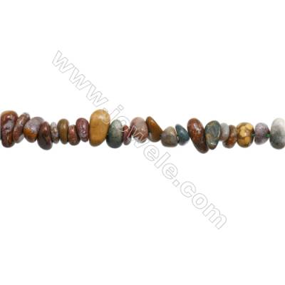 "Natural Indian Agate Beads Strand  Chips  Size 5~8x6~12mm  hole 0.8mm  15~16"" x 1strand"