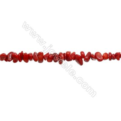 "Red Coral Chips Beads   Size 4~8x5~14mm  hole 0.8mm  31~32"" x 1 Strand"