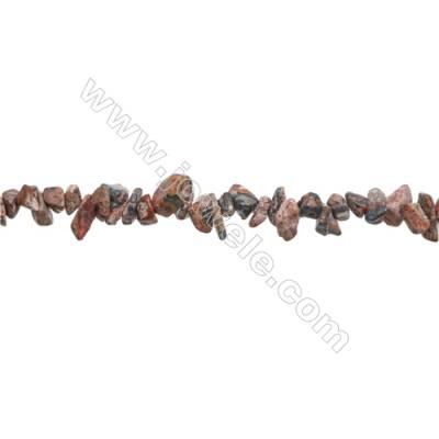 "Natural Leopard Skin Jasper Chips Beads   Size 4~7x5~13mm  hole 0.8mm  31~32"" x 1 Strand"