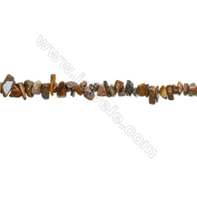 "Natural Tiger Eye Beads Strand  Chips  Size 4~7x5~13mm  hole 0.8mm  31~32"" x 1strand"