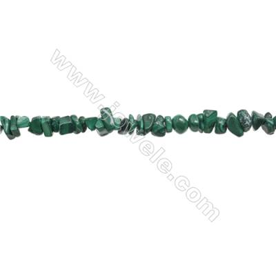 "Natural Malachite Beads Strand  Chips  Size 5~8x6~12mm  hole 0.8mm  31~32"" x 1strand"