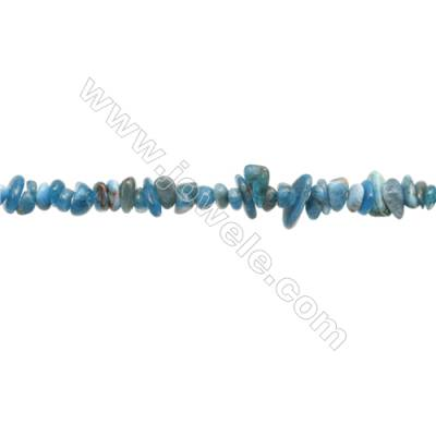 """Natural Apatite Beads Strand  Chips  Size 4~8x5~13mm  hole 0.8mm  31~32"""" x 1strand"""