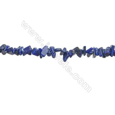 "Natural Lapis Lazuli Beads Strand  Chips  Size 4~9x5~13mm  hole 0.8mm  31~32"" x 1strand"