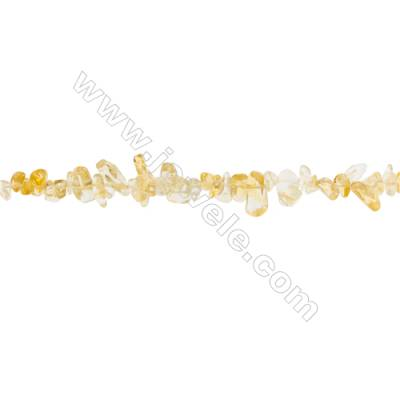 """Natural Citrine Beads Strand  Chips  Size 4~7x5~15mm  hole 0.8mm  31~32"""" x 1strand"""