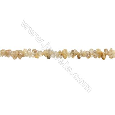 """Natural Rutilated Quartz Beads Strand  Chips  Size 4~9x5~11mm  hole 0.8mm  15~16"""" x 1strand"""