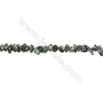"""Natural Seraphinite Chips Beads  Size 4~9x5~12mm  hole 0.8mm  15~16"""" x 1 Strand"""