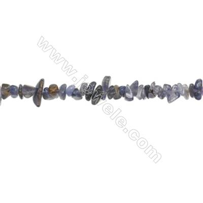 "Natural Iolite Chips Beads   Size 4~8x5~12mm  hole 0.8mm  31~32"" x 1 Strand"