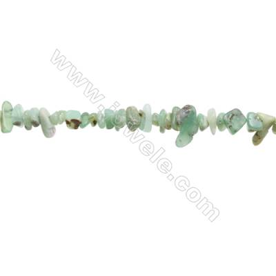 "Natural Chrysoprase Beads Strand  Chips  Size 4~8x5~16mm  hole 0.8mm  31~32"" x 1strand"