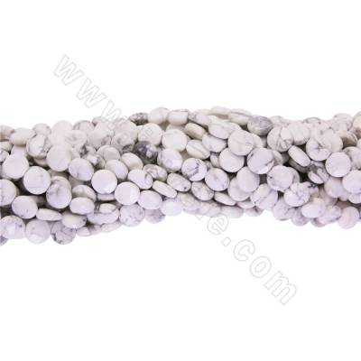 Natural  Howlite beads...