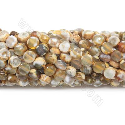 Natural fire agate beads...