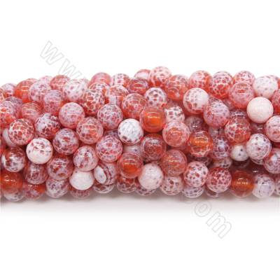 Dyed fire agate beads...