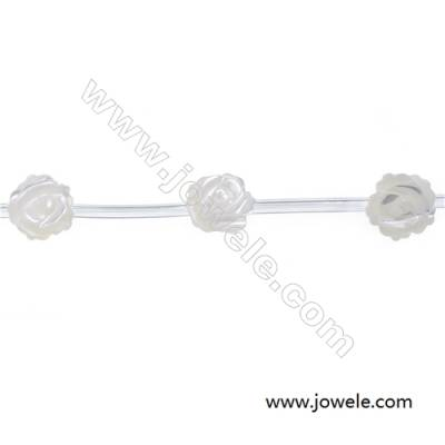 Rose-shaped white mother-of-pearl shell strand beads diameter 10 mm 15 beads/strand hole diameter  0.7mm