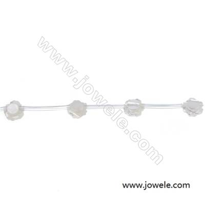 White mother-of-pearl rose shape  8mm strand beads  hole diameter 0.7 mm 15 beads/strip